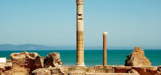 Carthago delenda est 【カルタゴ滅ぶべし】