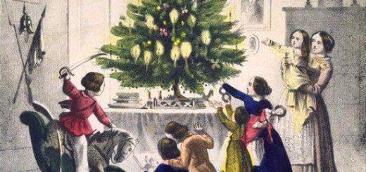 Histoire du sapin de Noël 【クリスマスツリーの歴史】